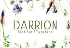 Darrion [5 Fonts]