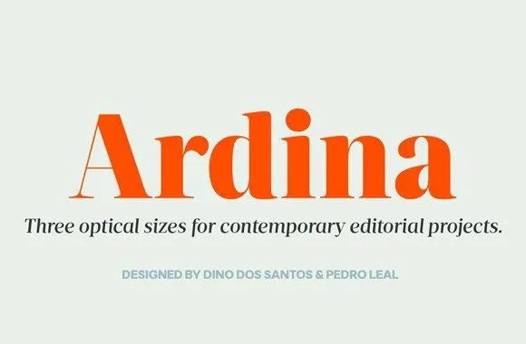 Ds Ardina Title Super Family [10 Fonts]   The Fonts Master