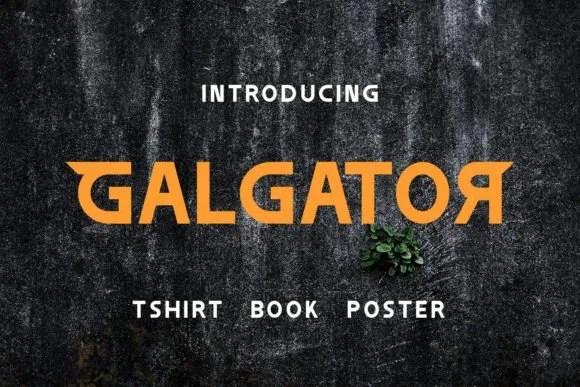 Galgator [1 Font]   The Fonts Master