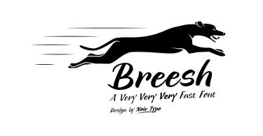 Breesh [3 Fonts]