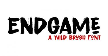 Endgame [2 Fonts]