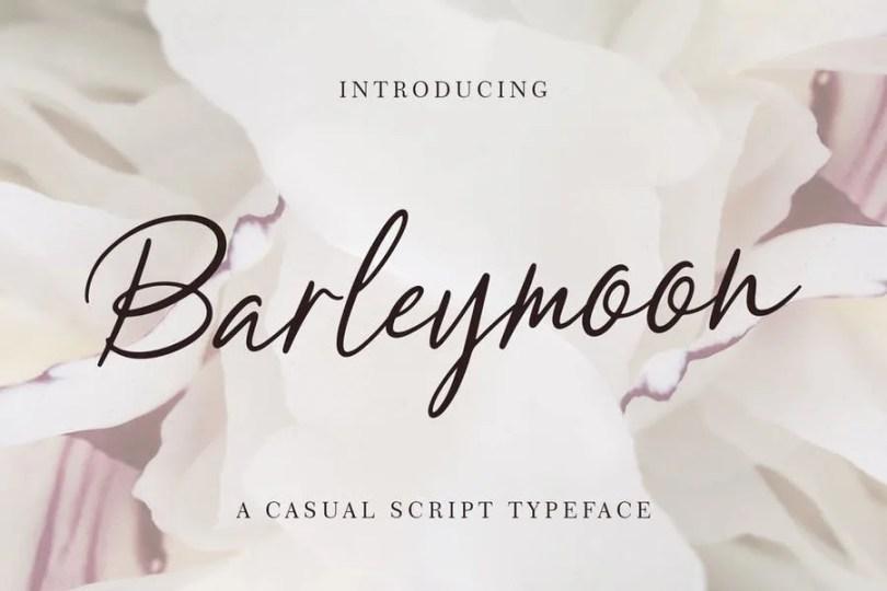 Barleymoon [1 Font]   The Fonts Master