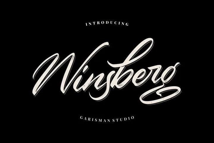 Winsberg [1 Font] | The Fonts Master