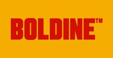 Boldine [3 Fonts]