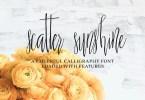Scatter Sunshine [2 Fonts]