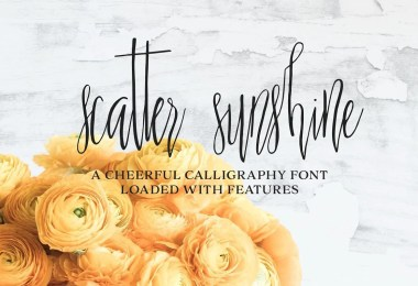 Scatter Sunshine [2 Fonts]