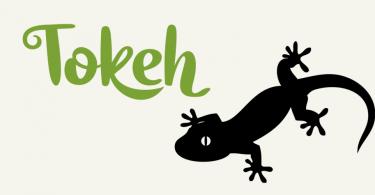Tokeh [2 Fonts]