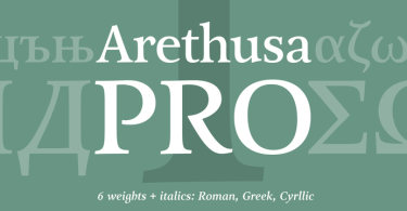 Arethusa Pro Super Family [12 Fonts]