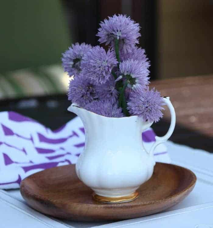 Chive Blossoms in a Vase2