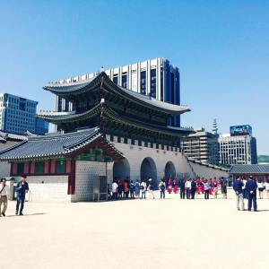 Seoul Searching | Travel Diaries preview video