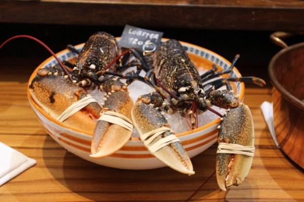 novikov lobster