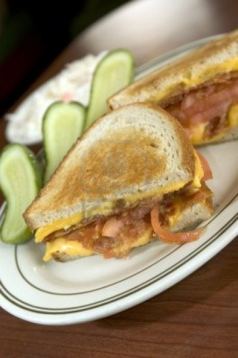 Crock-Pot Grilled Cheese With Beer & Pulled Pork recipe photo