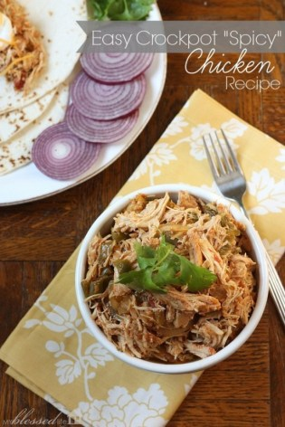 Easy 'Spicy' Crockpot Chicken recipe photo