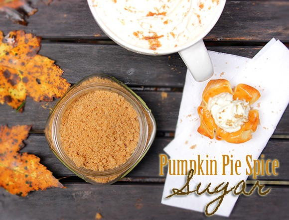 Pumpkin Pie Spice Sugar recipe photo