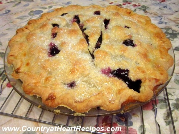 Country Blueberry Pie recipe photo