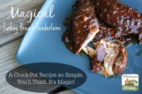 Crock-Pot Magical Turkey Breast Tenderloins recipe