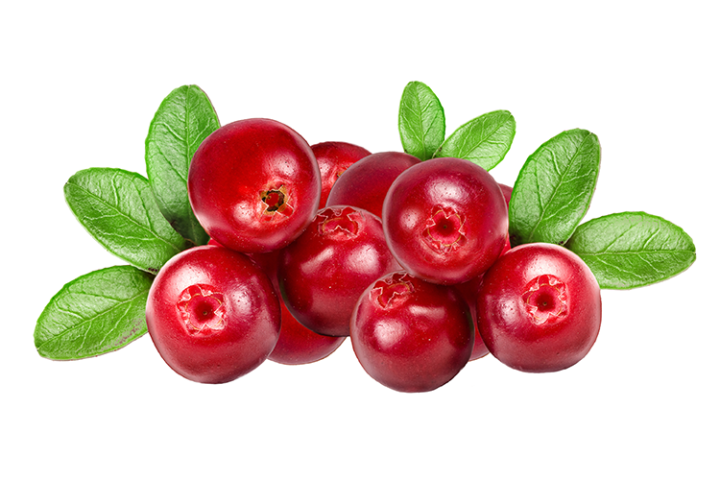 November 23: Eat a Cranberry Day