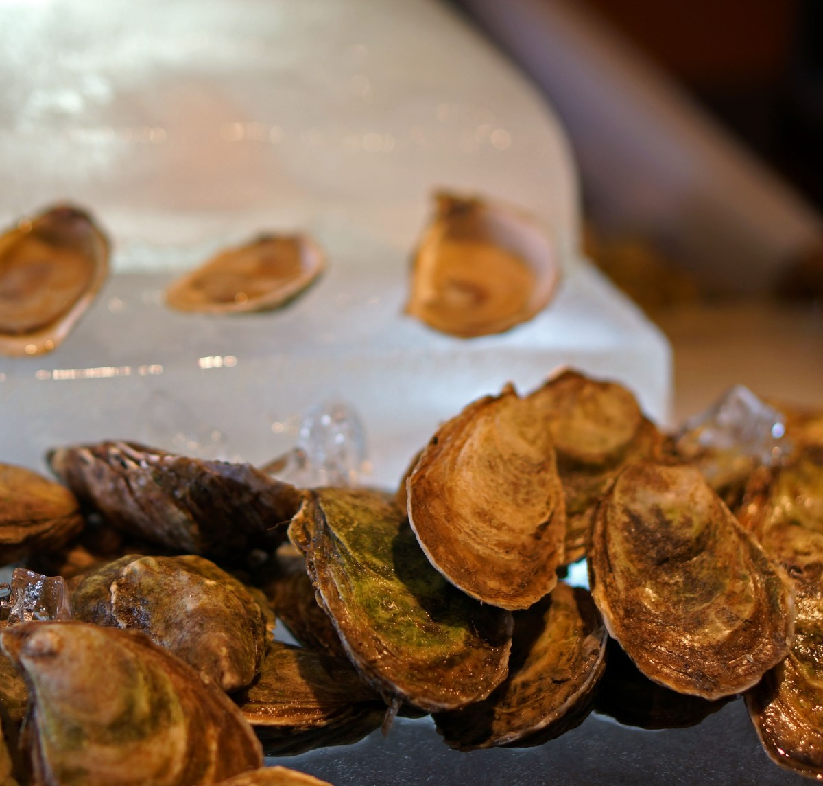 oysters.icewine