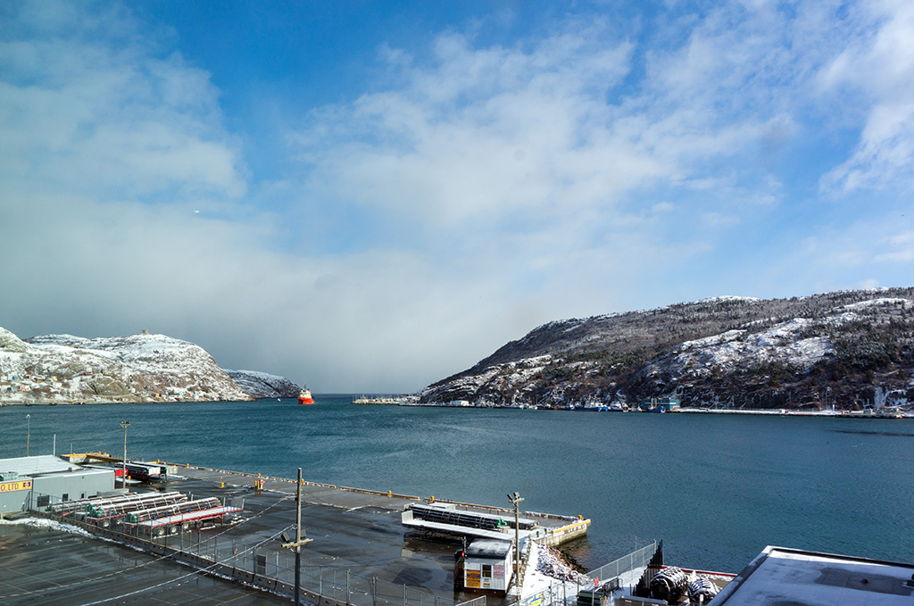 Alt Hotel St. John's Views