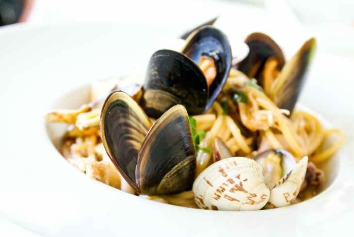 seashell dish