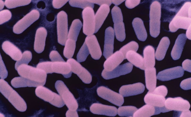 Listeria Food Poisoning Lawyers