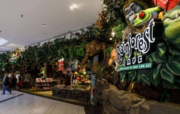 Rainforest Cafe Franchise