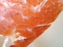 Más pruebas del fishEye y el macro del olloclip