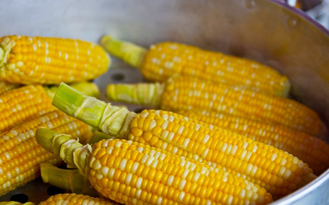 What is a Corn?