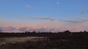 moon rising over the ridge