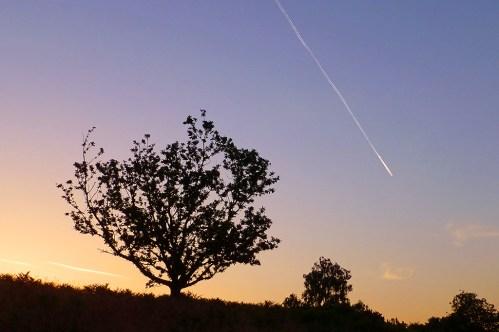 sunrise over puttenham common