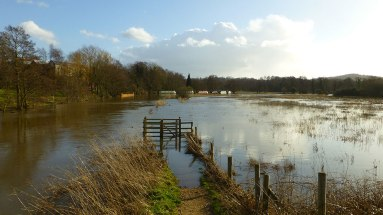 Flooded watermeadows at Shalford again