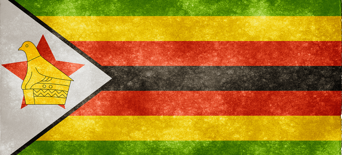 Zimbabwe Security Perspectives