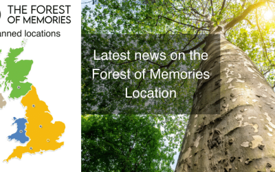 Where will the Forest of Memories be?