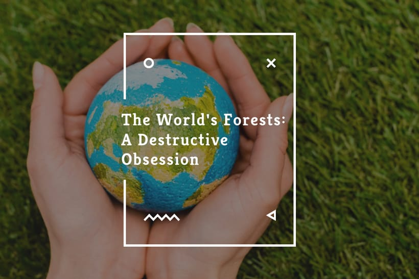 The World's Forests: A Destructive Obsession