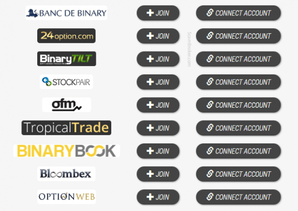 Automated Binary Software Brokers