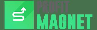 Profit Magnet Logo