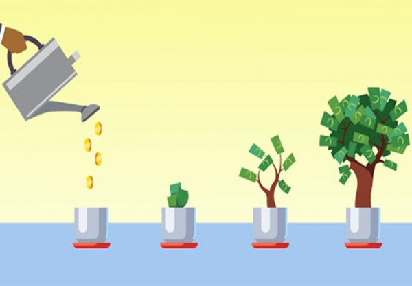 # 2 Investment Management