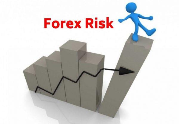 Forex Risk