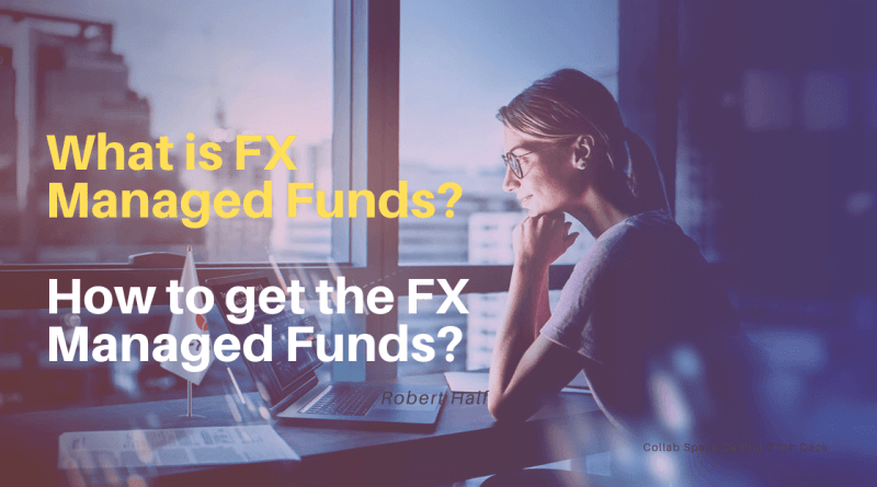 Forex Managed Funds
