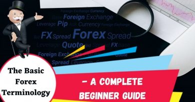 The Basic Forex Terminology