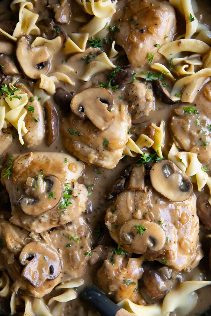 Chicken stroganoff mixed with egg noodles.