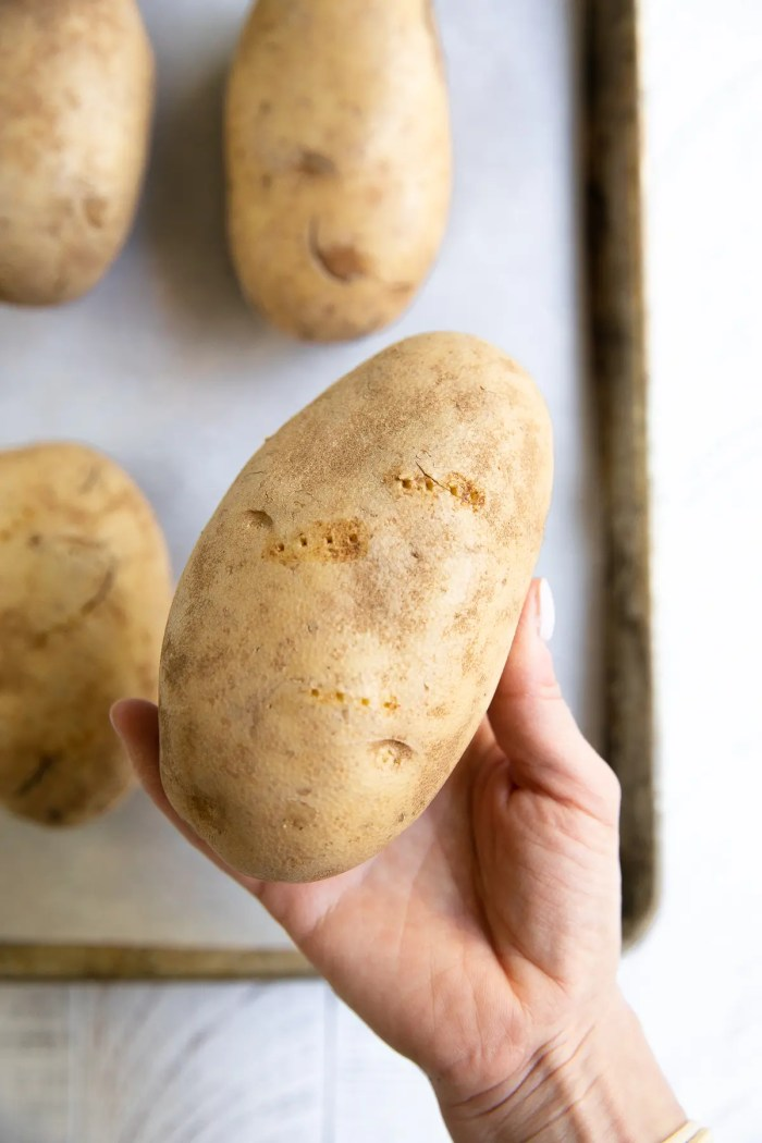 Hand holding a russet potato with several fork indentations in the flesh.