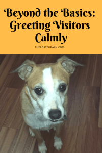 Beyond the Basics: Greeting Visitors Calmly