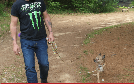 Teaching Your Dog to Heel (With Me Command)