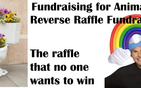 Fundraising for Animals: Reverse Raffle Fundraiser