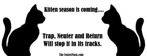 Trap, Neuter and Return - Kitten season is coming.