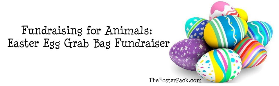 Fundraising for Animals: Easter Egg Grab Bag Fundraiser