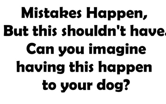 Can you imagine having this happen to your dog?