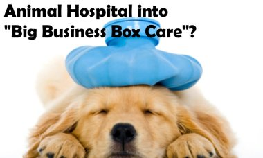 """Is your Veterinarian or Animal Hospital into """"Big Business Box Care""""?"""
