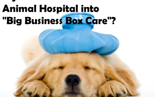 "Is your Veterinarian or Animal Hospital into ""Big Business Box Care""?"